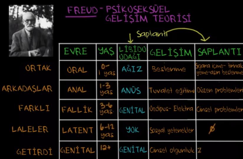 Freud Psikoseksüel Gelişim Kuramı
